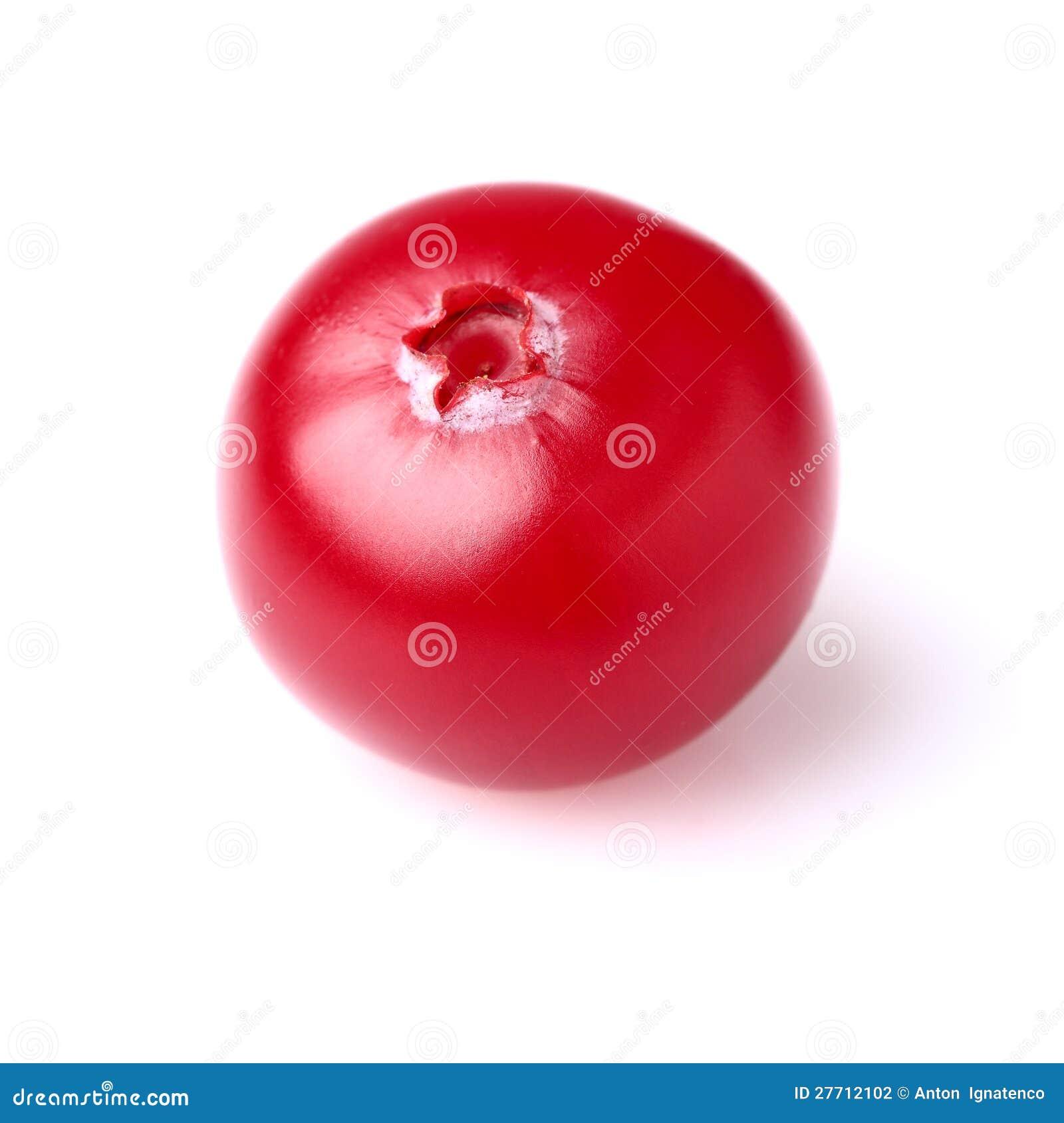 En mogen cranberry i closeup
