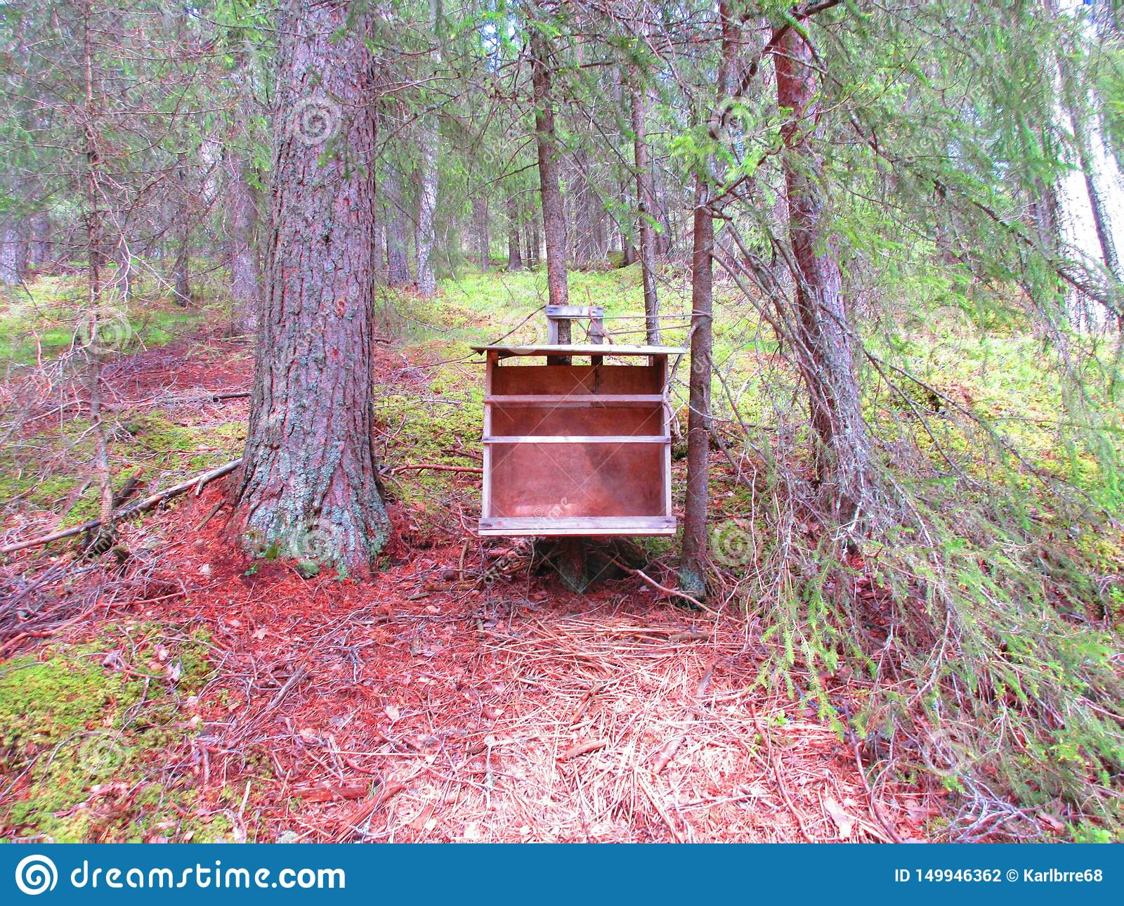 En oud boekenrek dat ik in het bos heb gevonden