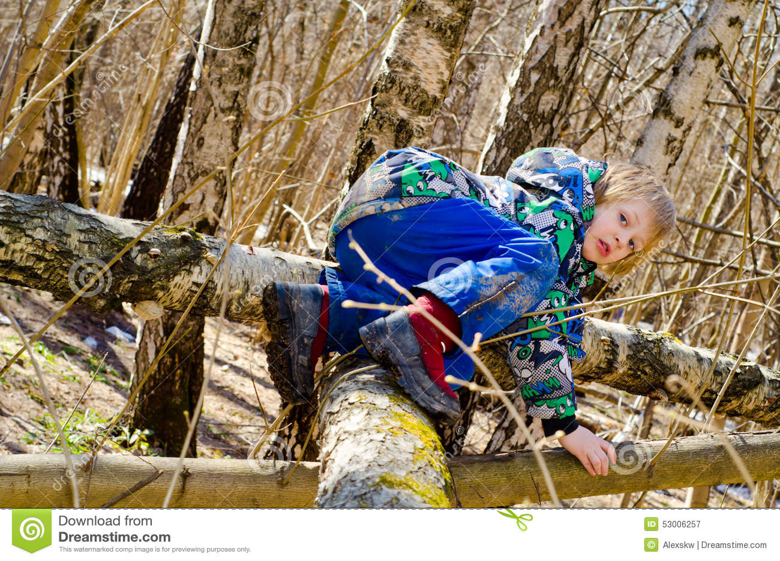 En pojke klättrar på ett träd