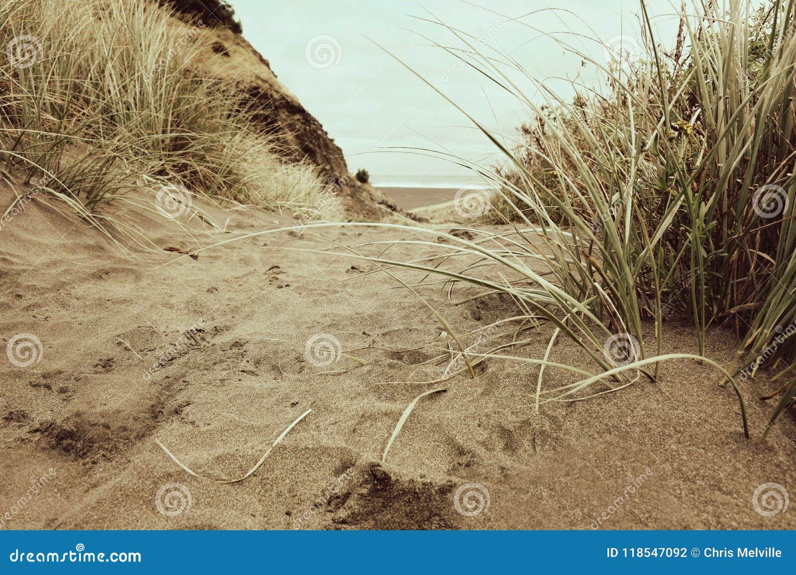 En Sandy Pathway blytaket över en kulle och down stranden
