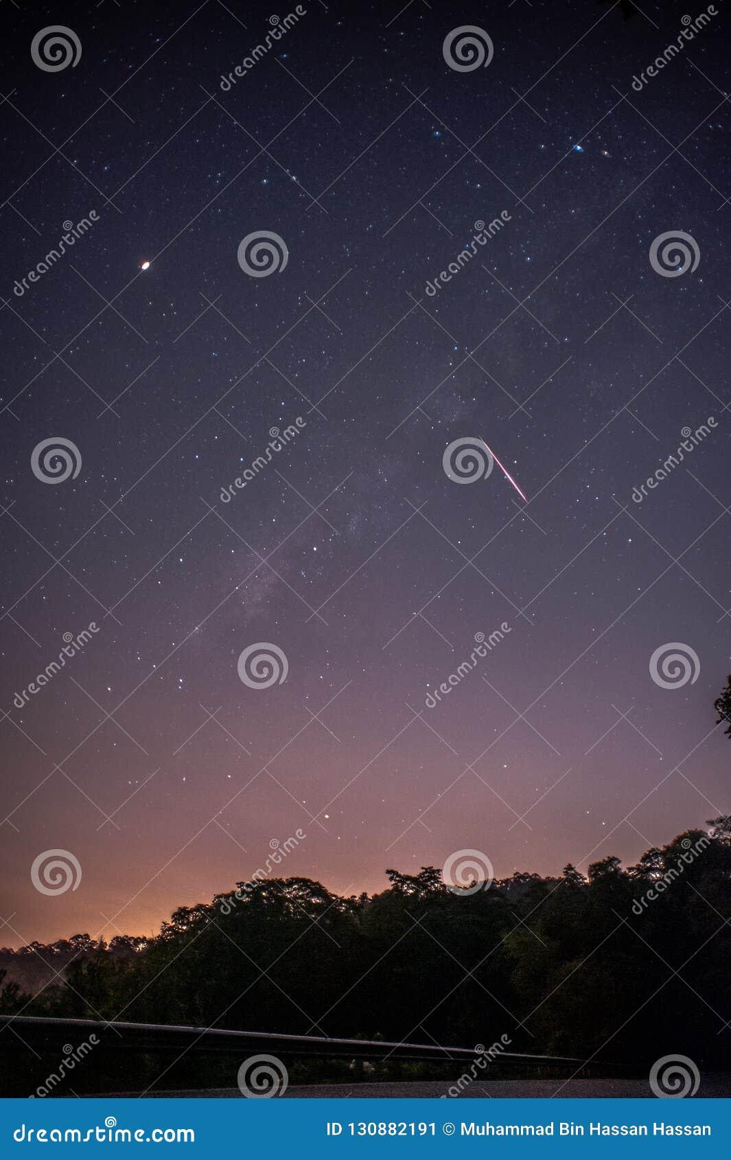 En sikt av meteorregnet och den mjölkaktiga vägen med trädskogkonturn i bakgrunden Observation för nattPerseid meteorregn