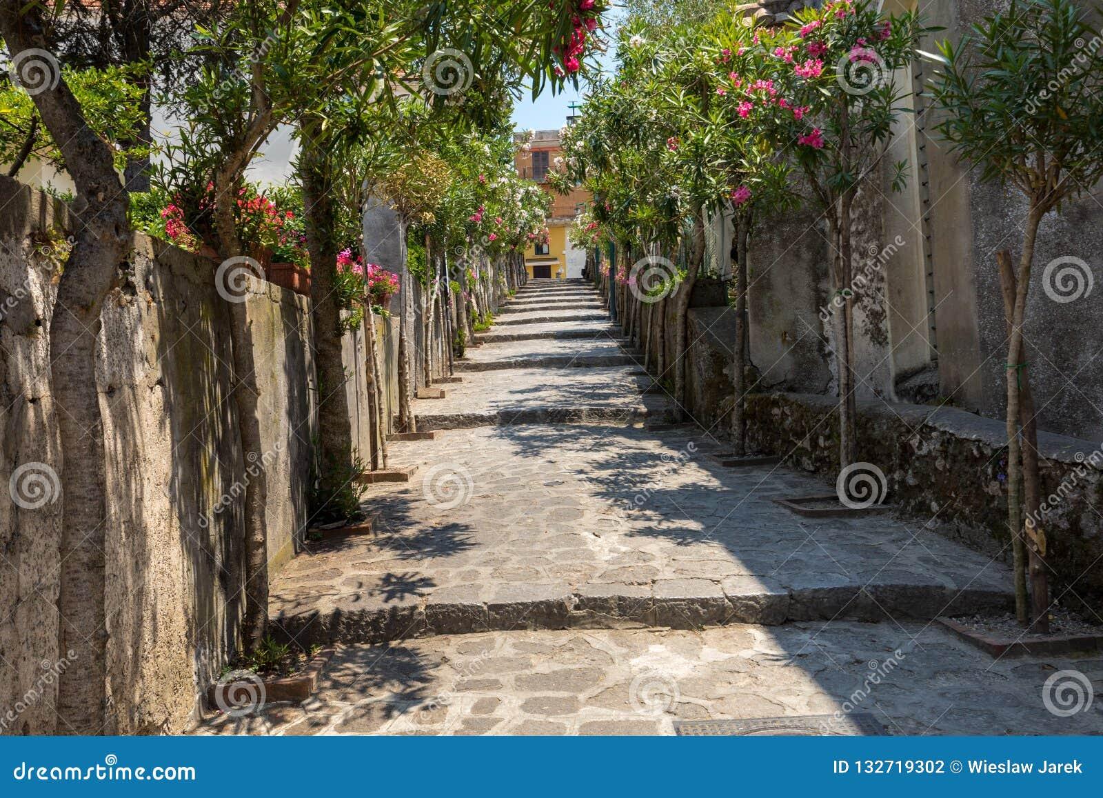 En smal brant gata med blommande oleander i Ravello Amalfi kust