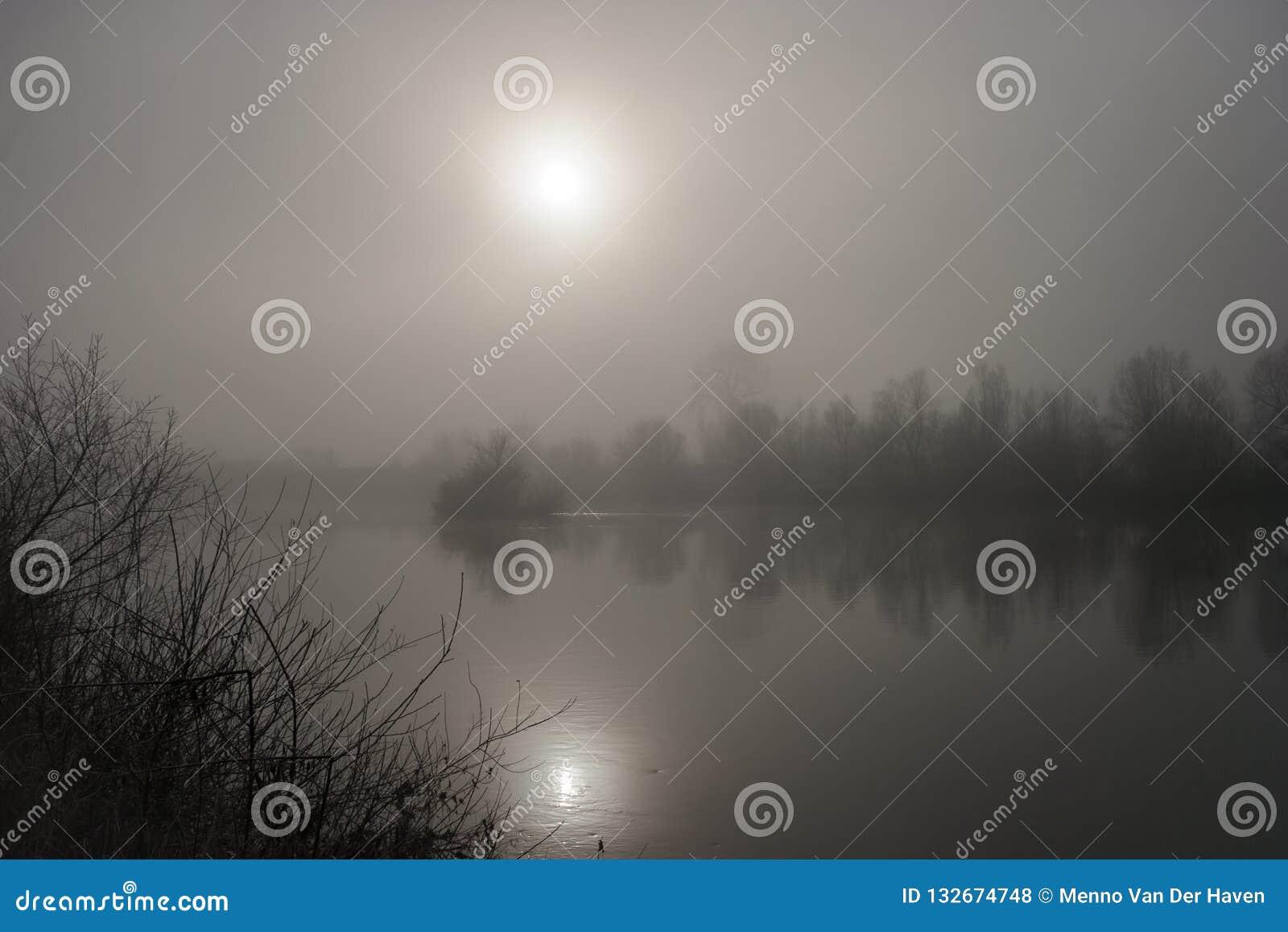 En stillhet och en dimmig morgon nära floden Mures i hjärtan av Transylvania, Rumänien
