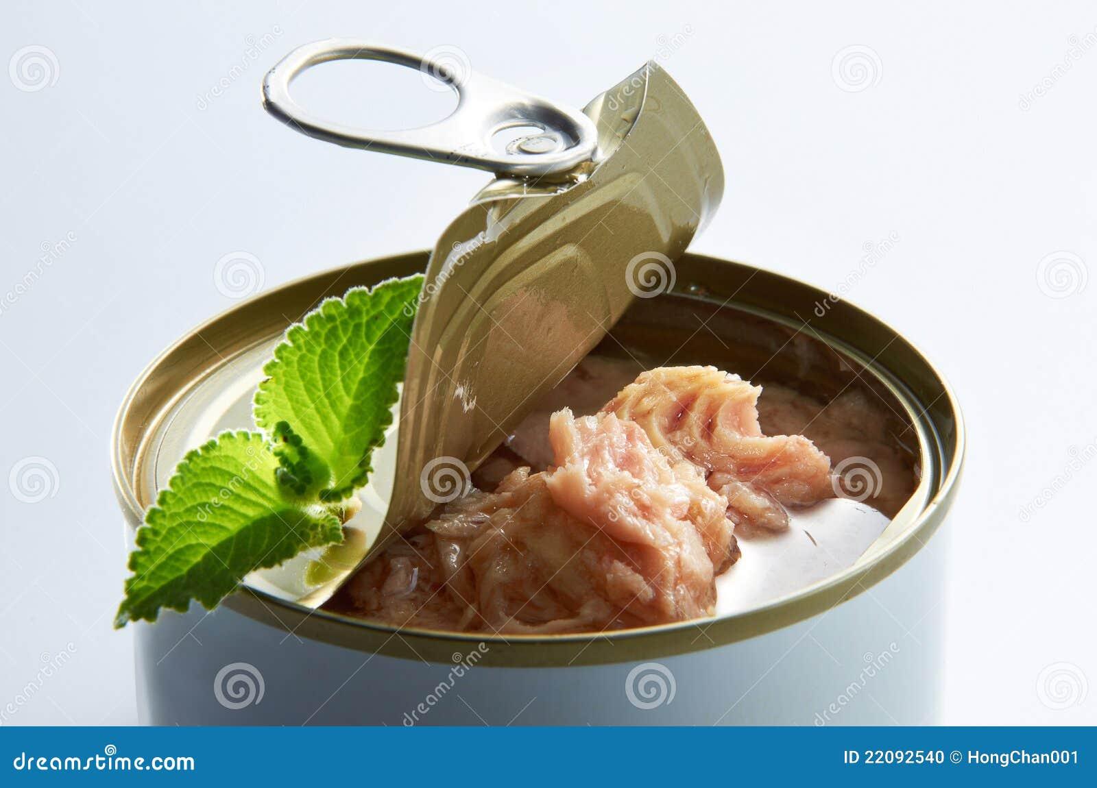En stor bittonfisk