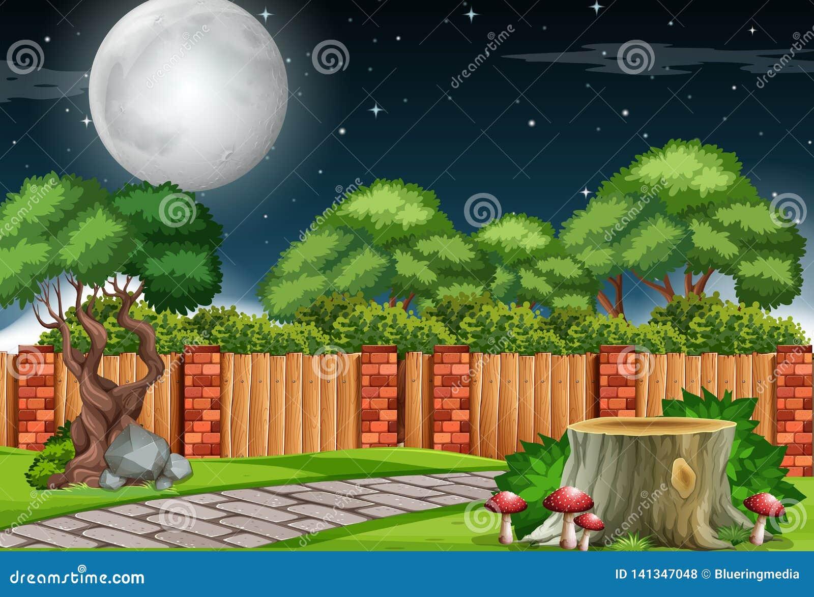 En trädgårdplats på natten