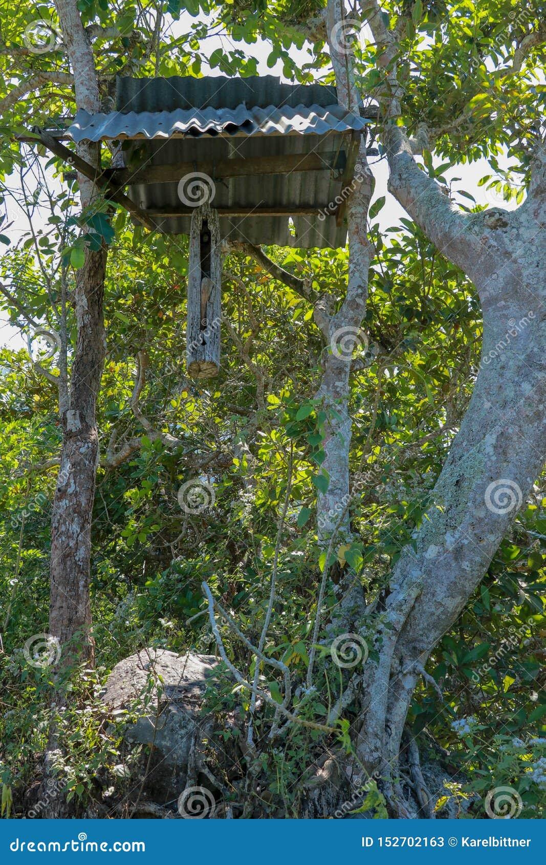 En träklocka med en klubba som gjordes från en trädstam, hängde på en stråle mellan träd på den Bali ön Balinesen Hindus gör kloc