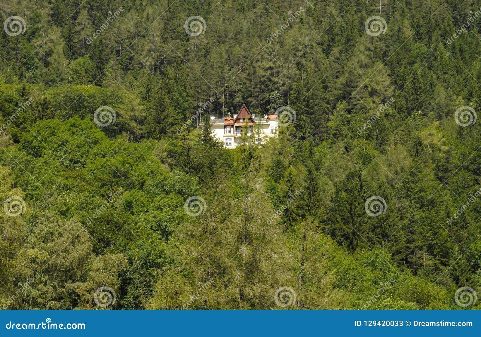 En trevlig villa inom skogen