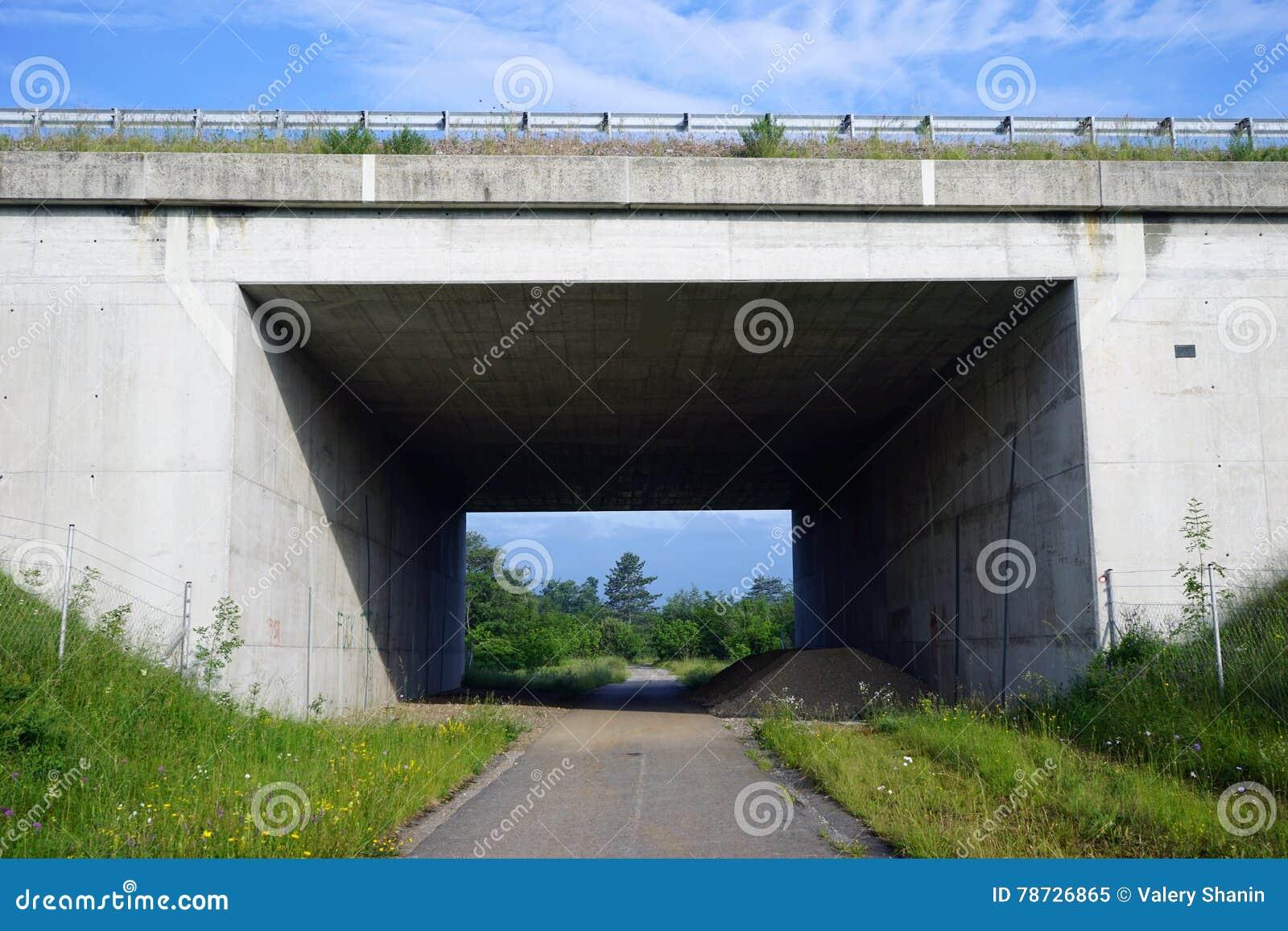 En tunnel under huvudvägen