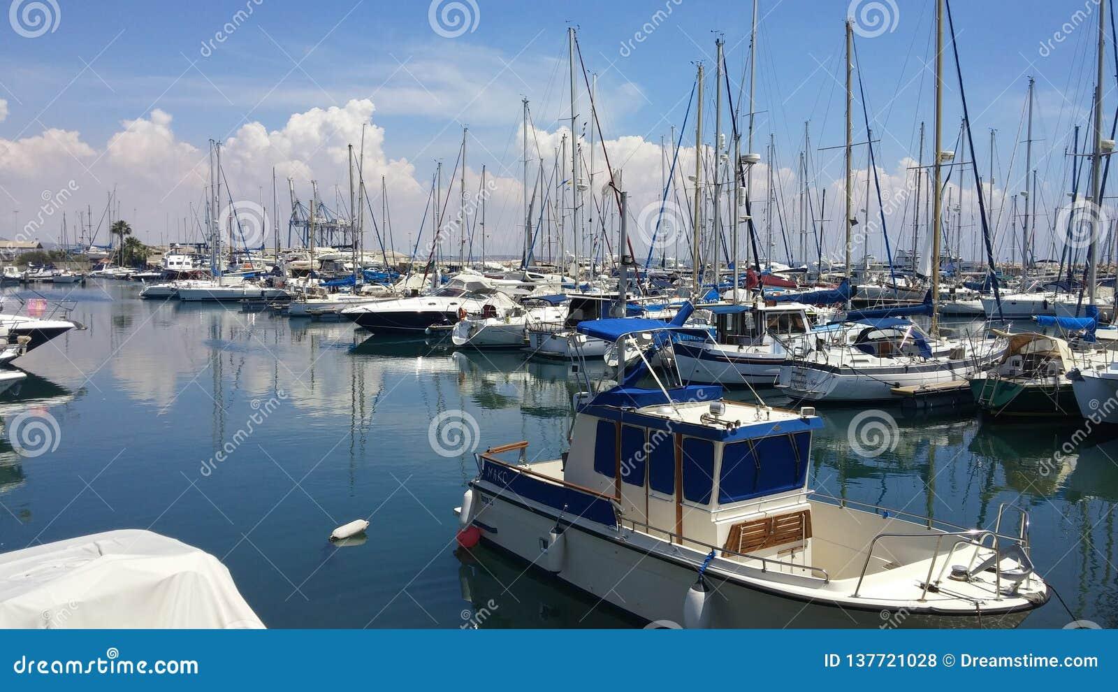 En underbar sommarmorgon på den Larnaca marina