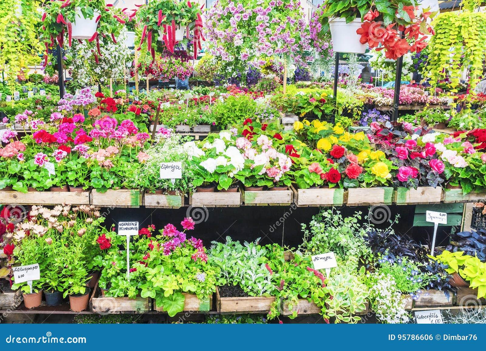 En variation av blommor på hyllorna av marknaden