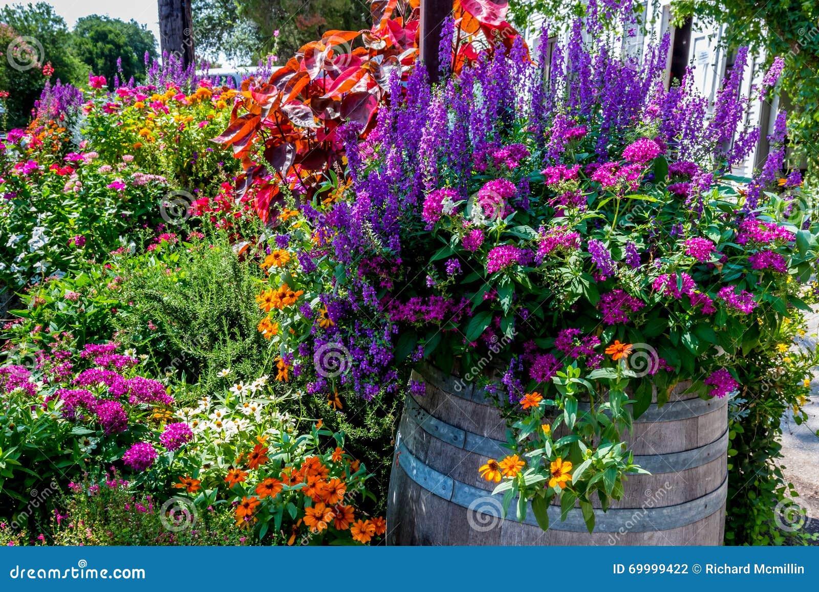 En variation av trädgårds- blommor