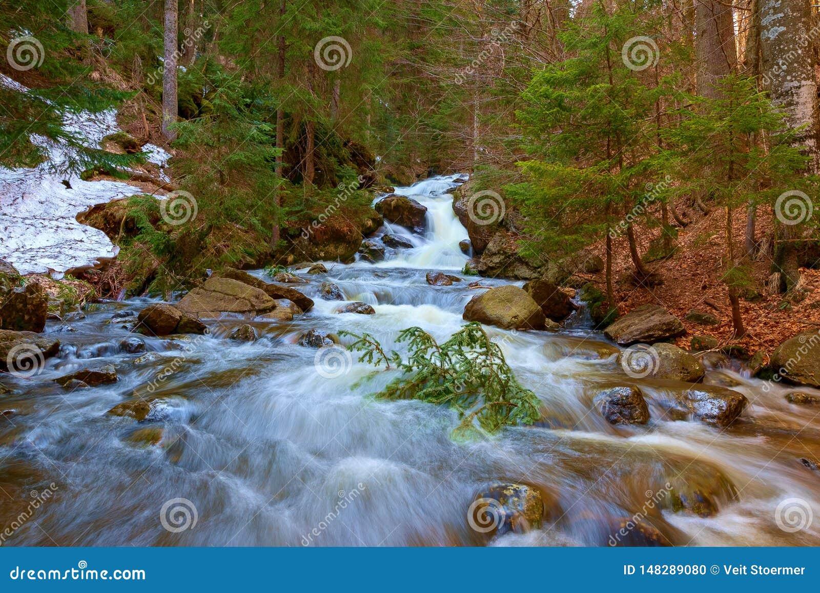 En vattenfall i skogen