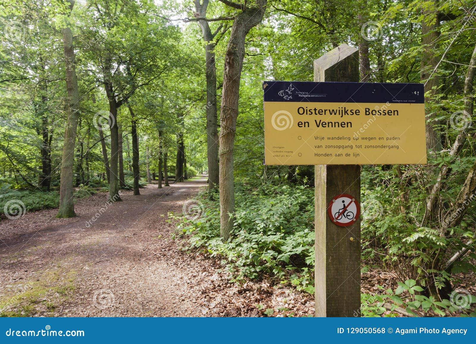 En Vennen de Oisterwijkse Bossen, bosques de Oisterwijk y pantanos