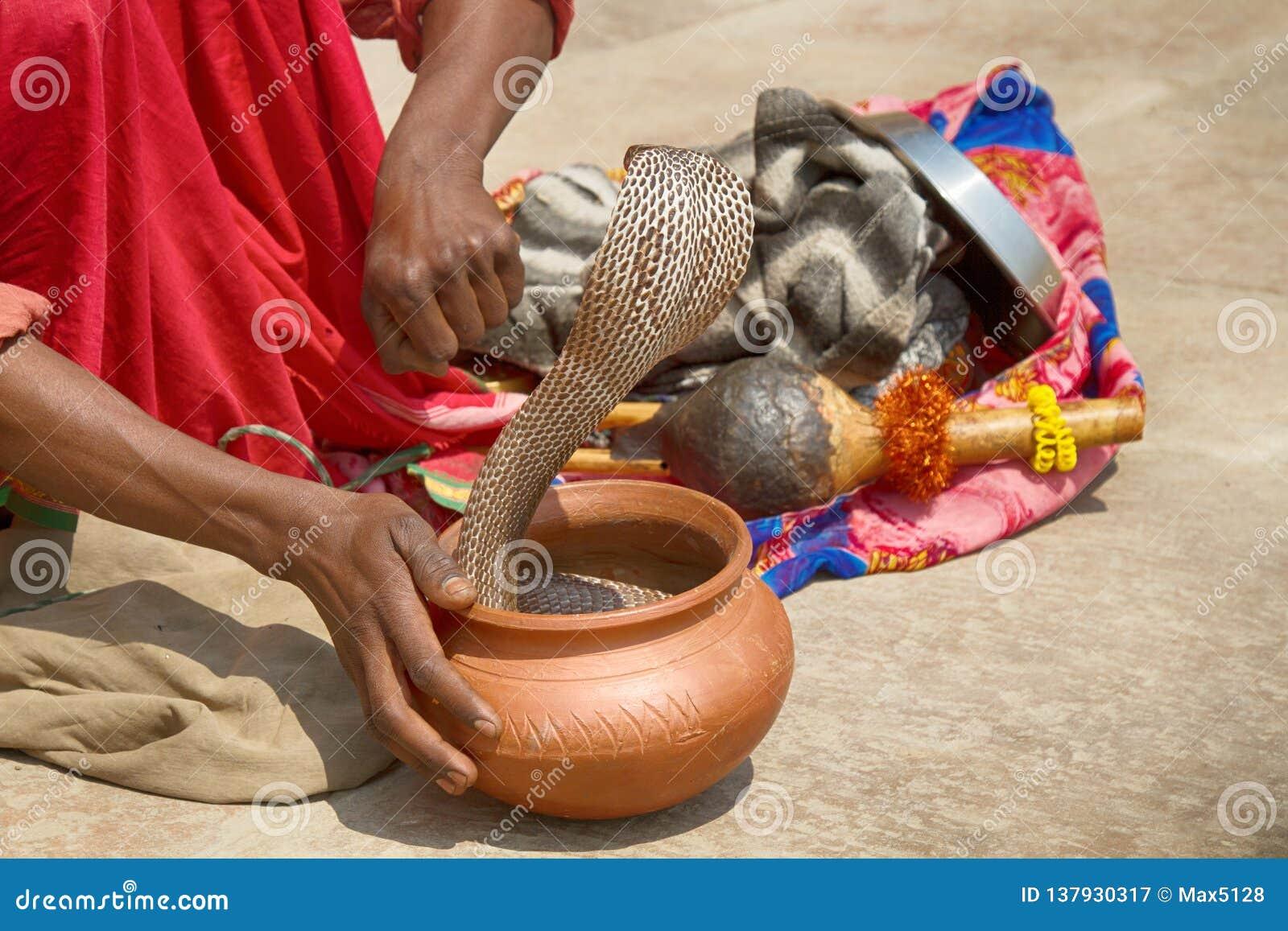 Encantador de serpiente pasado (Bede) de Benares