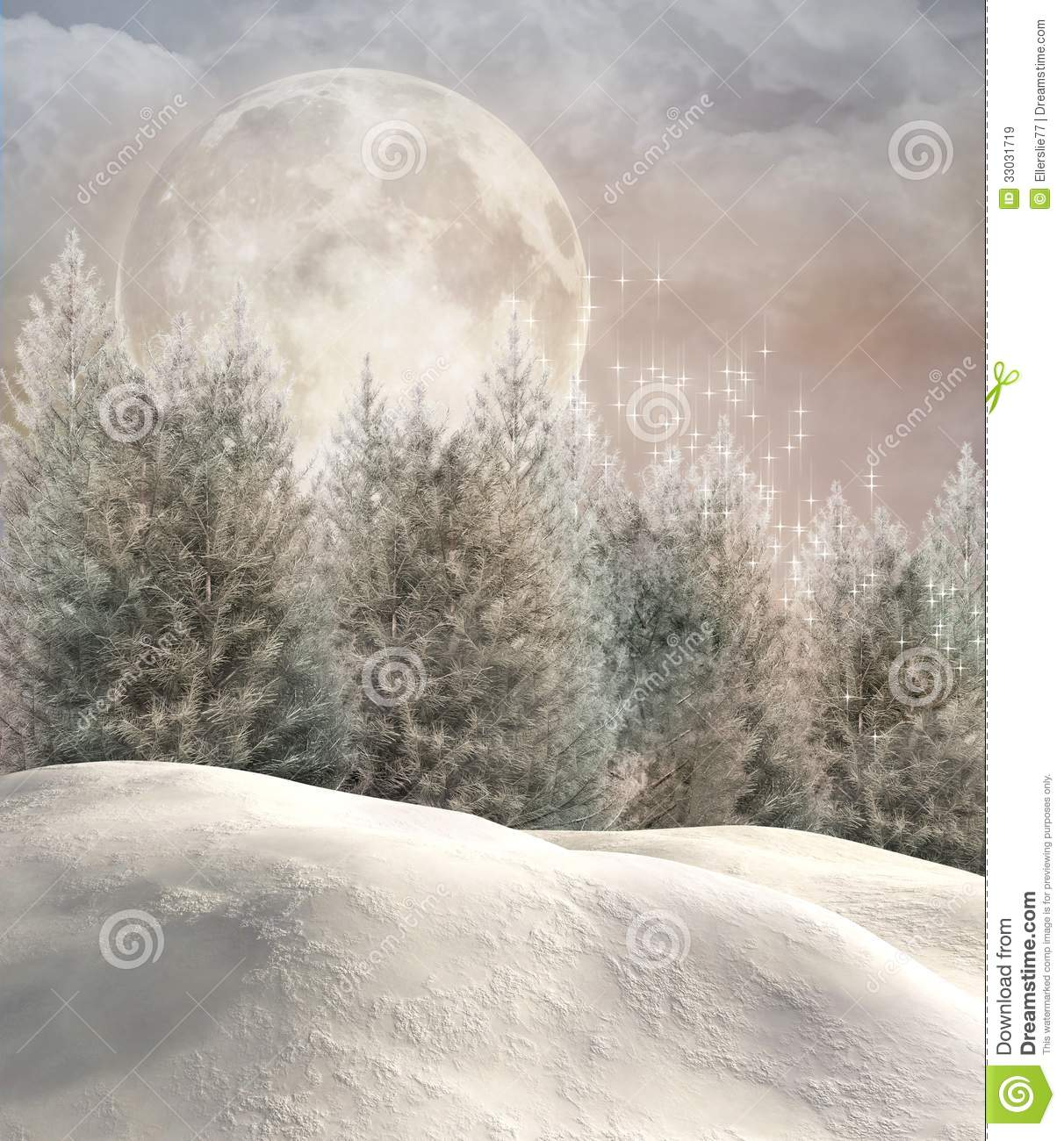Enchanted winter forest