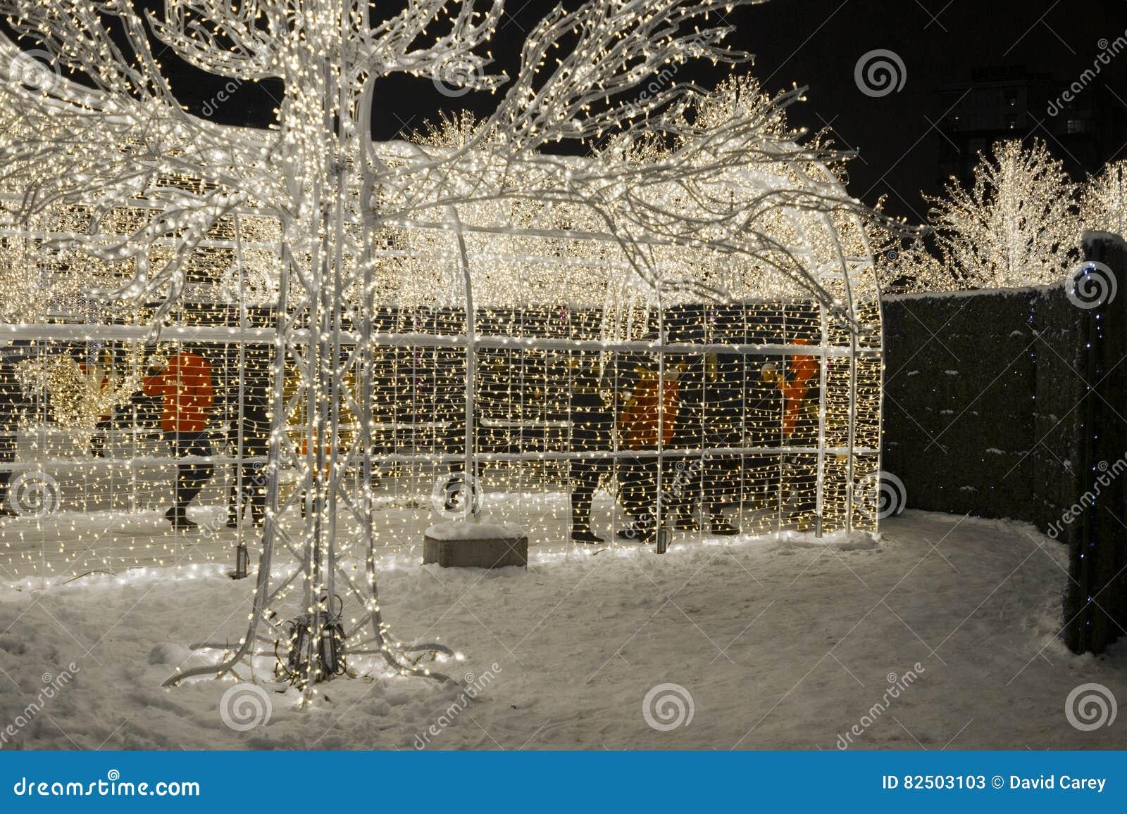 Enchantez le labyrinthe et le marché de lumière de Noël