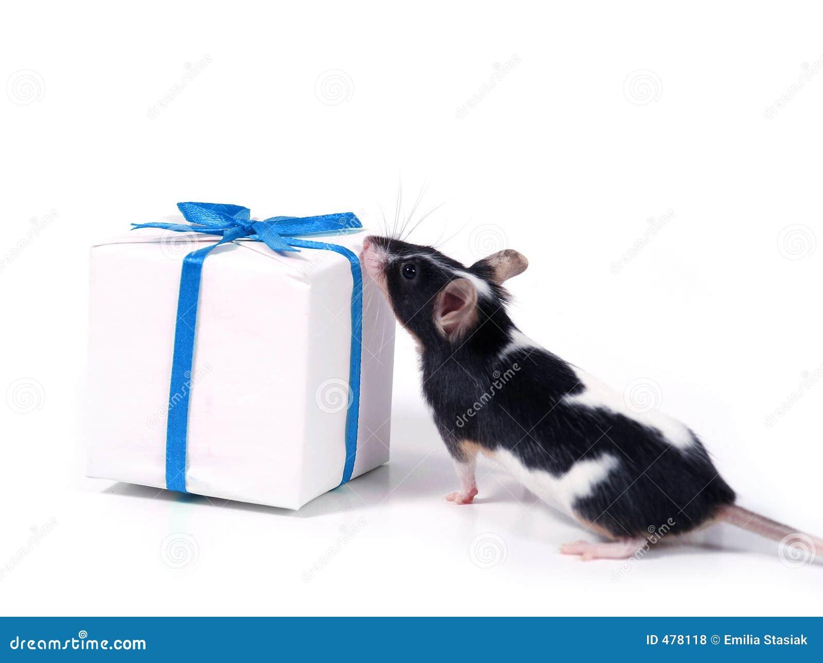 Encontrar un presente