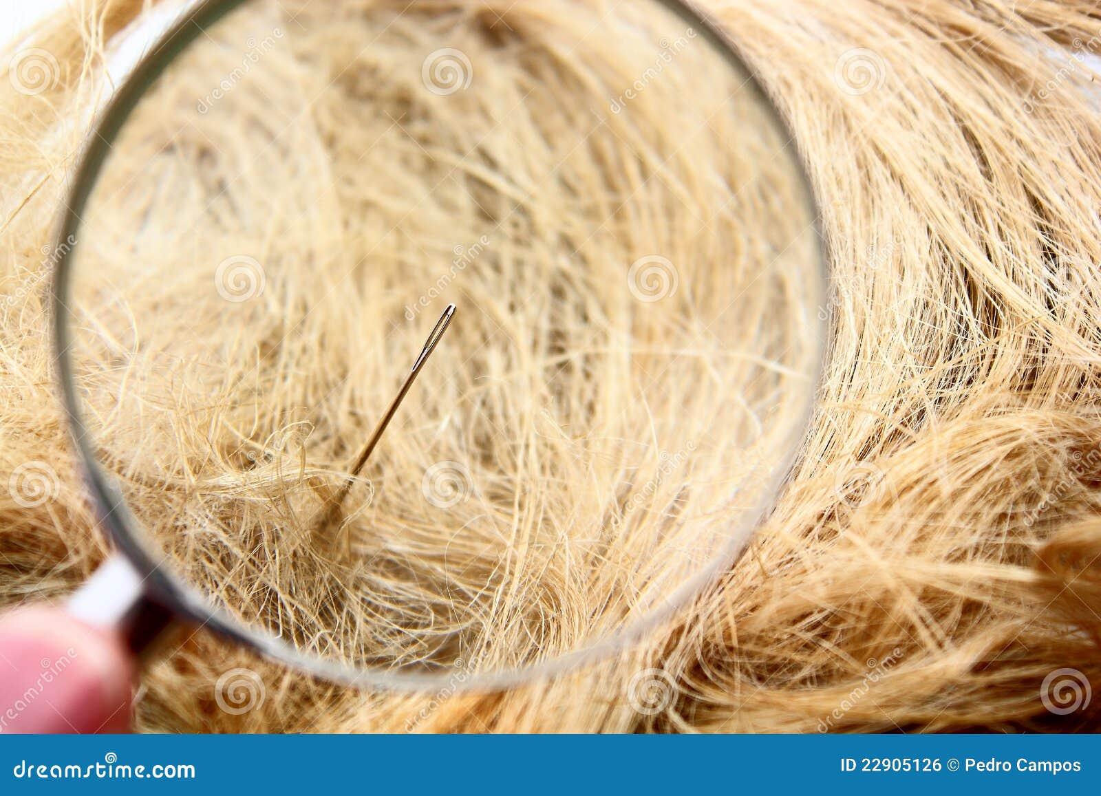Encuentre una aguja en el haystack