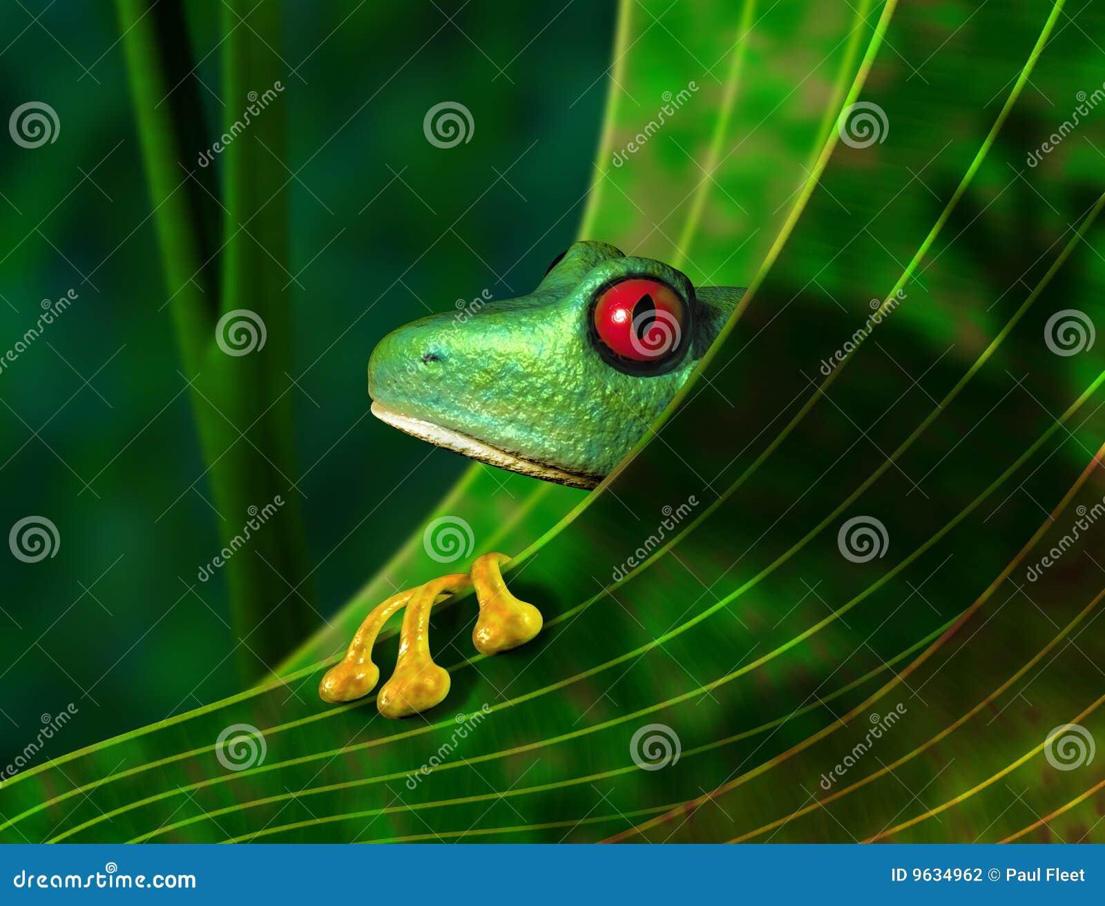 Endangered Rainforest Tree Frog