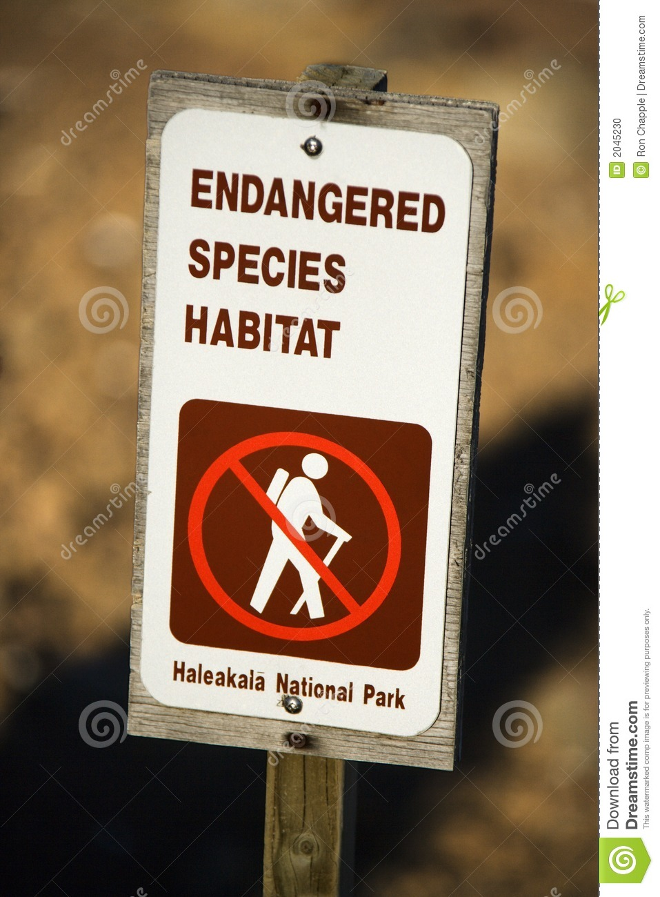 Endangered Species Sign Stock Photo Image 2045230