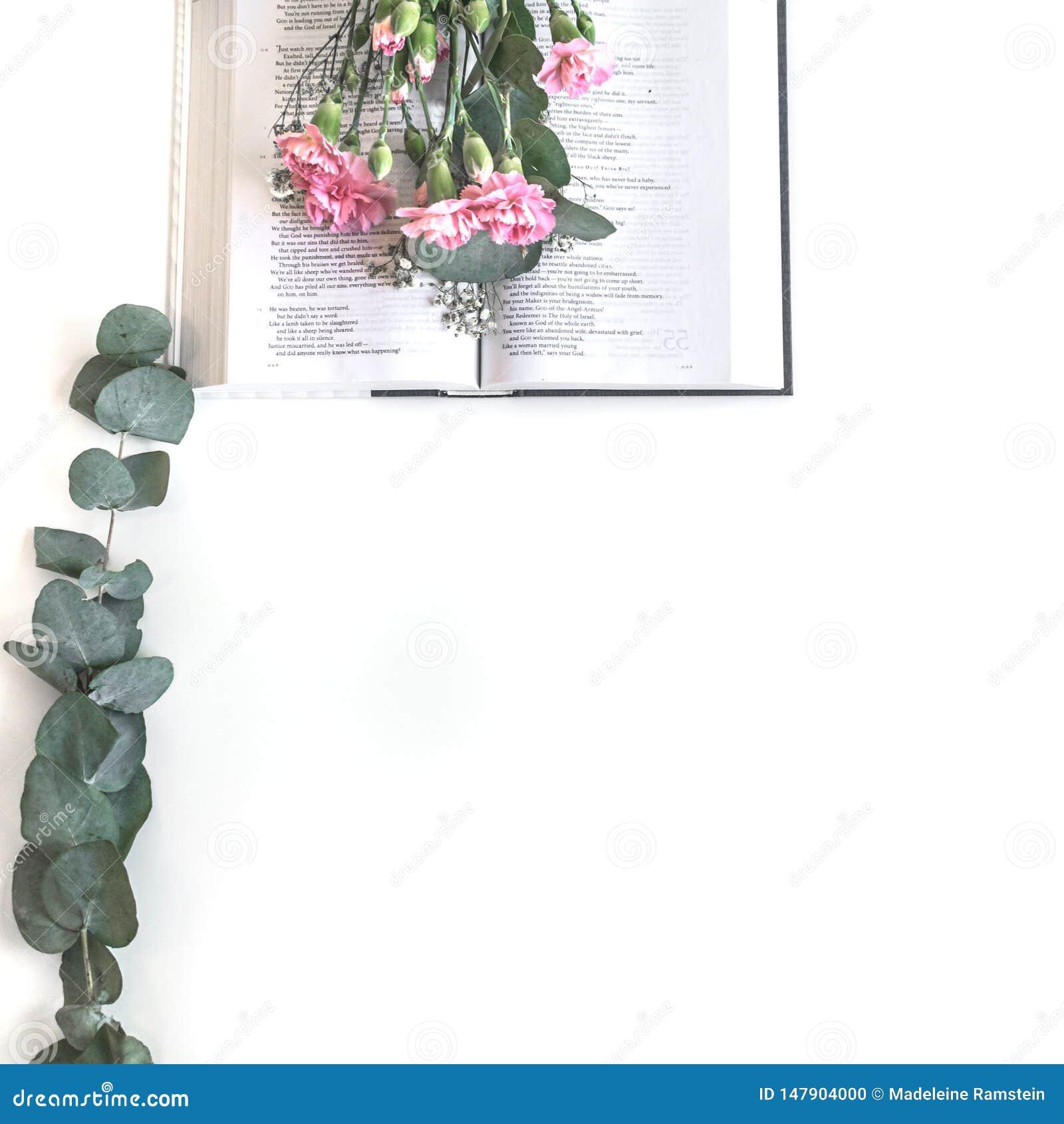 Endecha plana: Biblia y rosa, ramo rojo, color de rosa de la flor En el fondo blanco