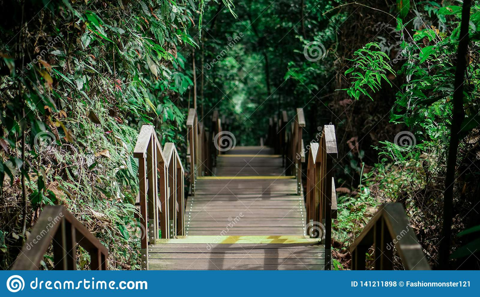 Endless wooden staircase in Singapore jungle