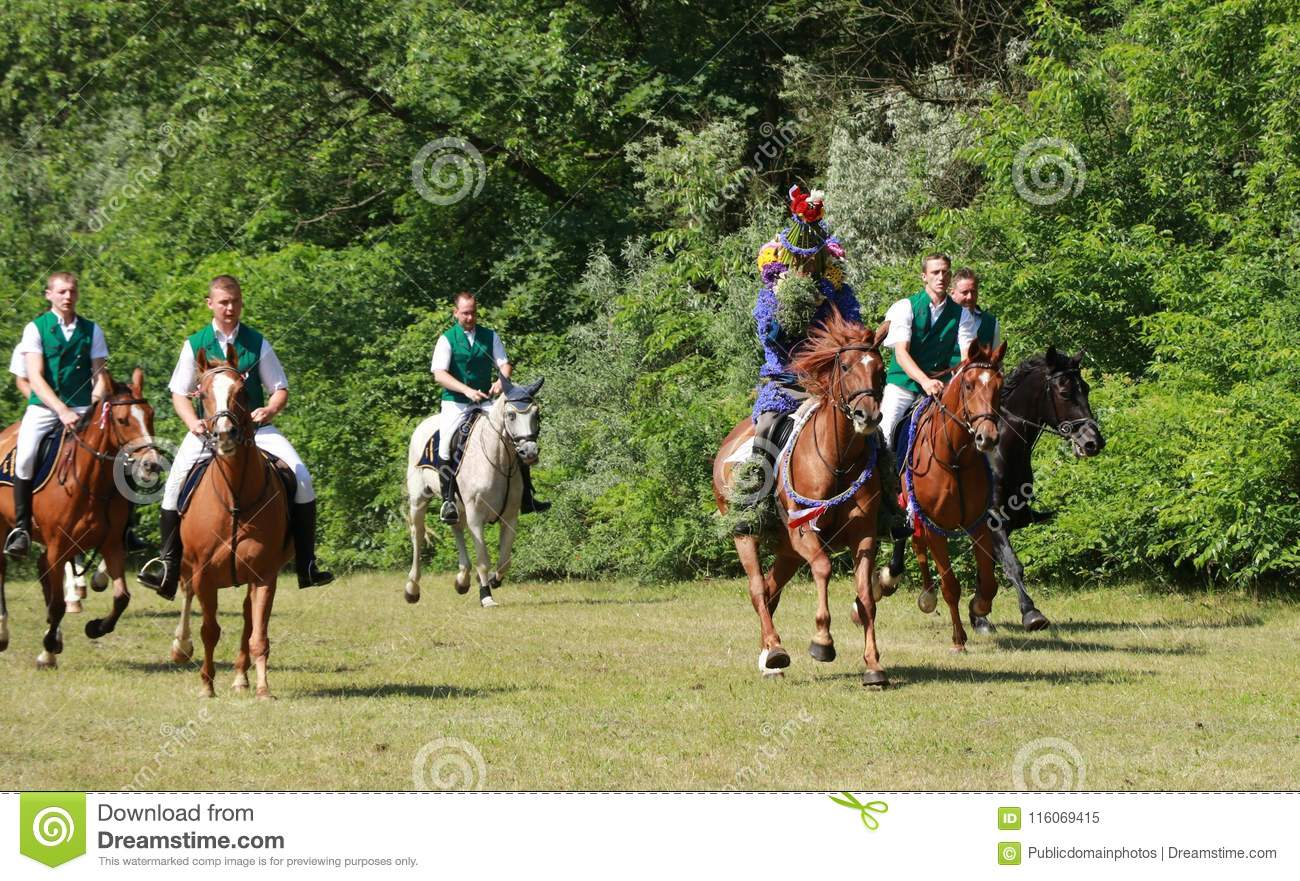 Endurance Riding, Trail Riding, Equestrianism, Horse Picture