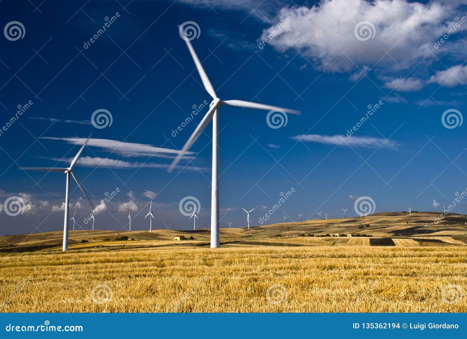 Energía renovable y desarrollo sostenible