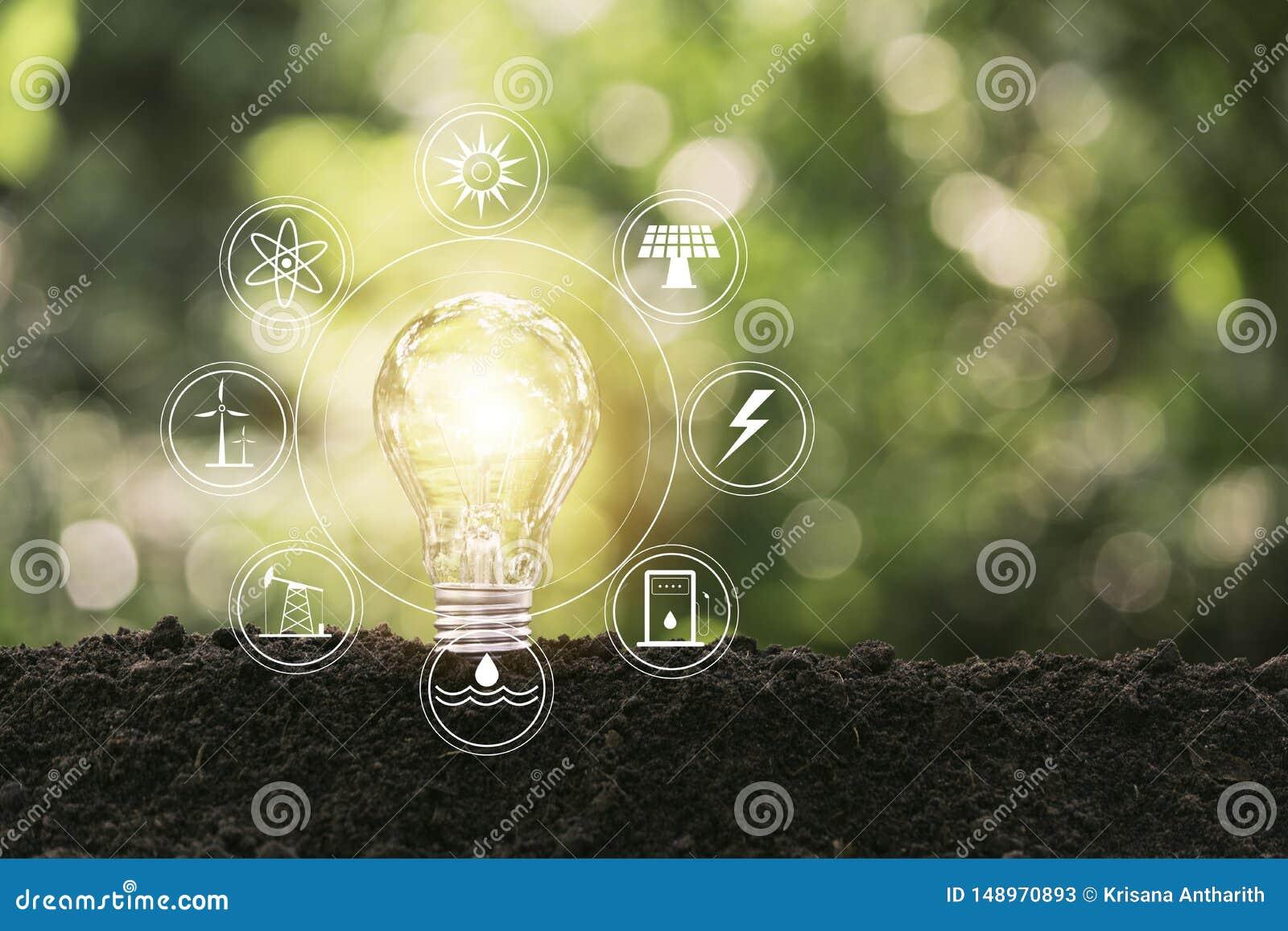 Energi - sparande ljus kula p? naturbakgrund f?r energi och id?rikt begrepp