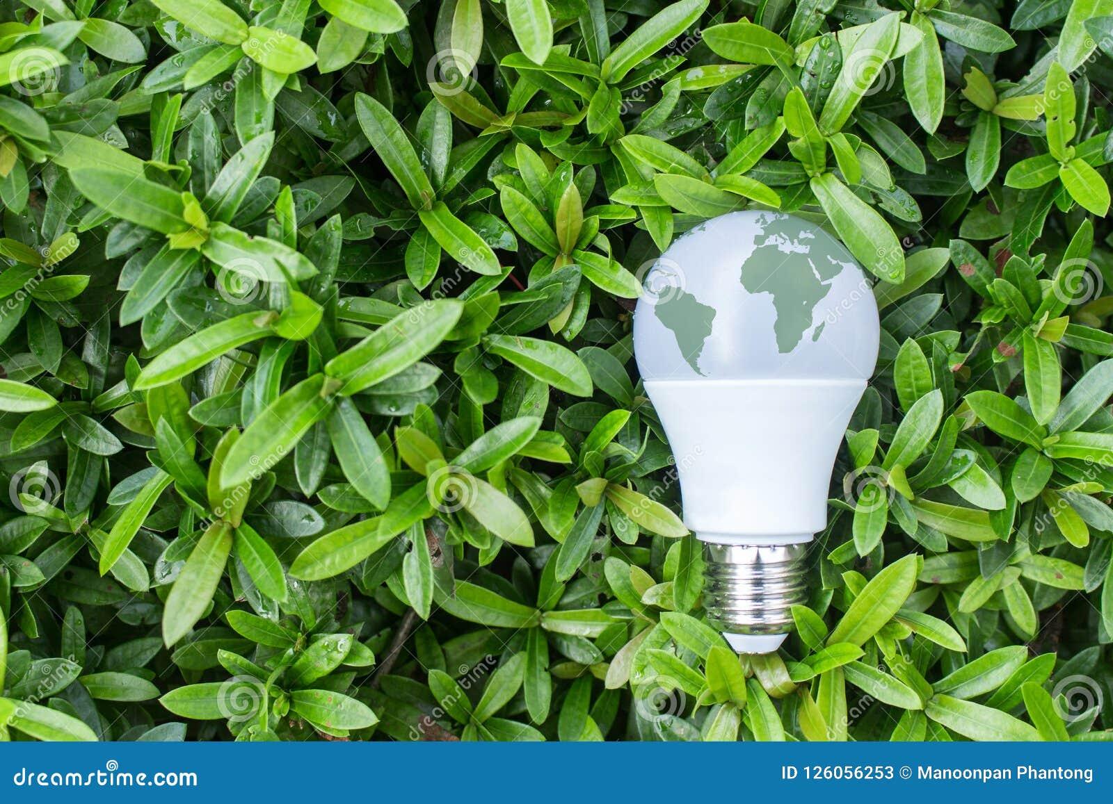 Energie - besparings LEIDENE Bol met verlichting in de groene aard backgr