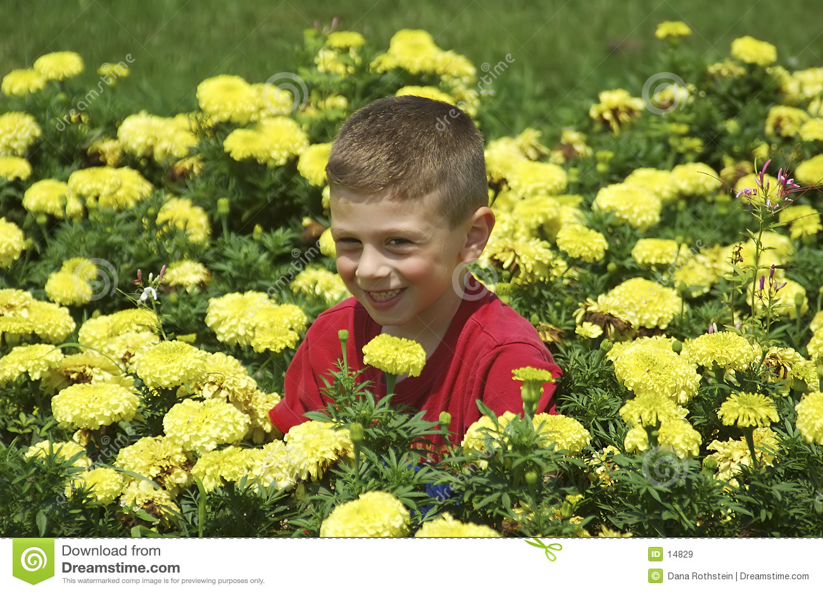 Enfant dans le bâti de fleur