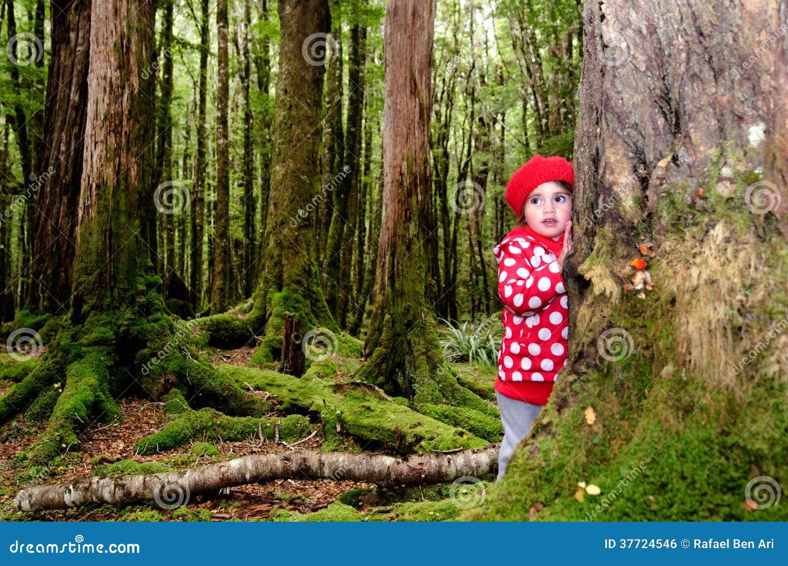 enfant perdu dans les bois image libre de droits image 37724546. Black Bedroom Furniture Sets. Home Design Ideas