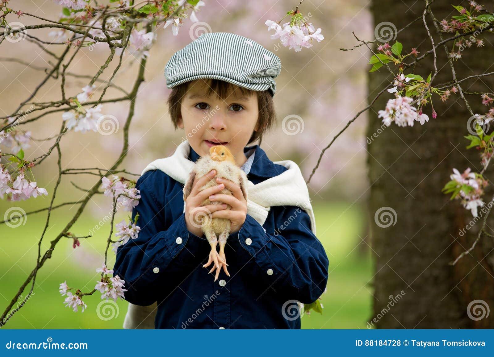 Enfant préscolaire adorable mignon, garçon, jouant avec de petits poussins