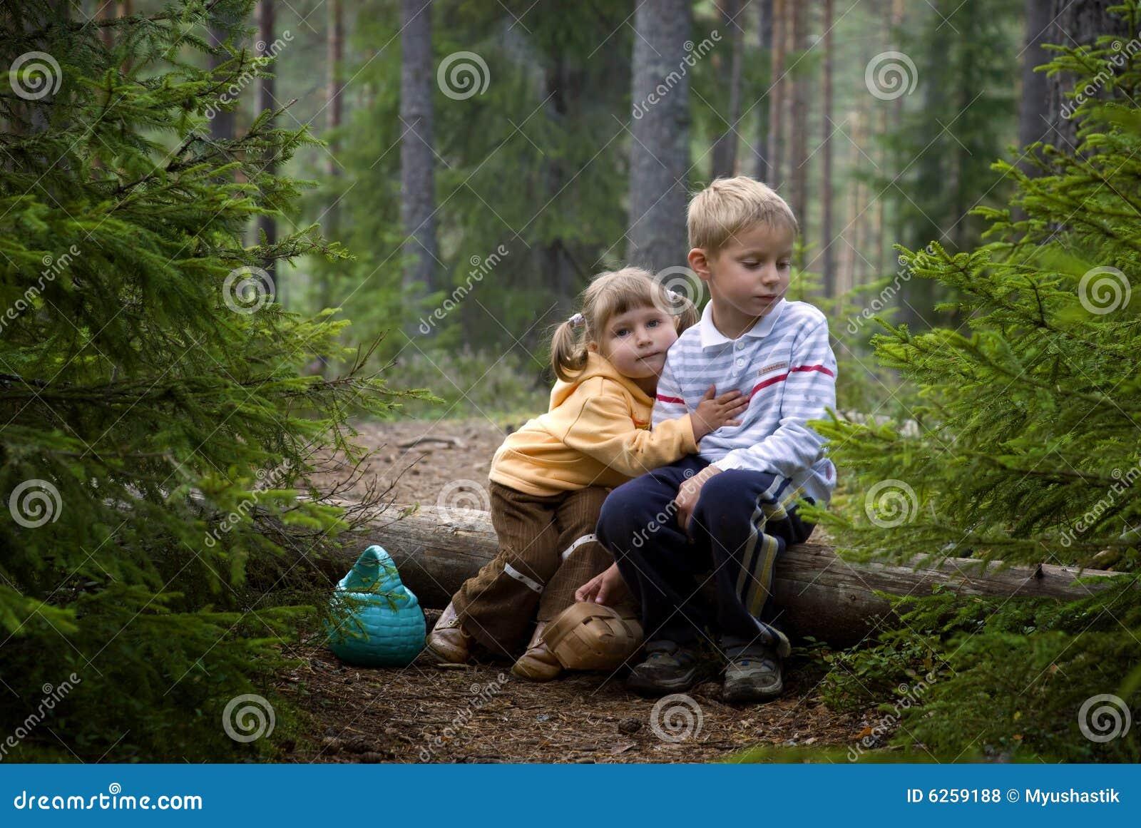 Enfants dans la forêt