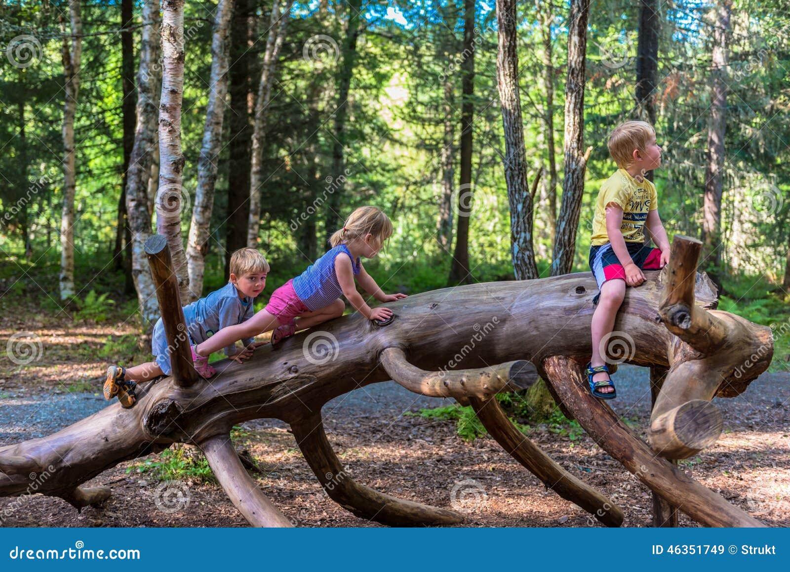 Enfants de mêmes parents montant sur un grand identifiez-vous une forêt