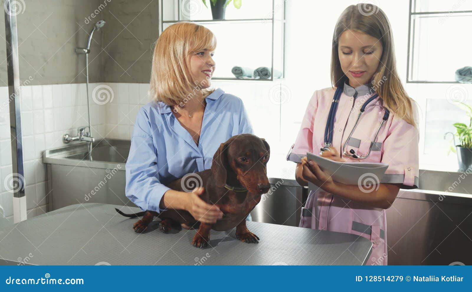 A enfermeira está tomando notas e está falando ao proprietário do cão