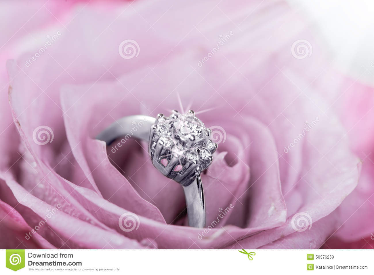 Engagement Ring With Diamonds In Rose Stock Photo Image