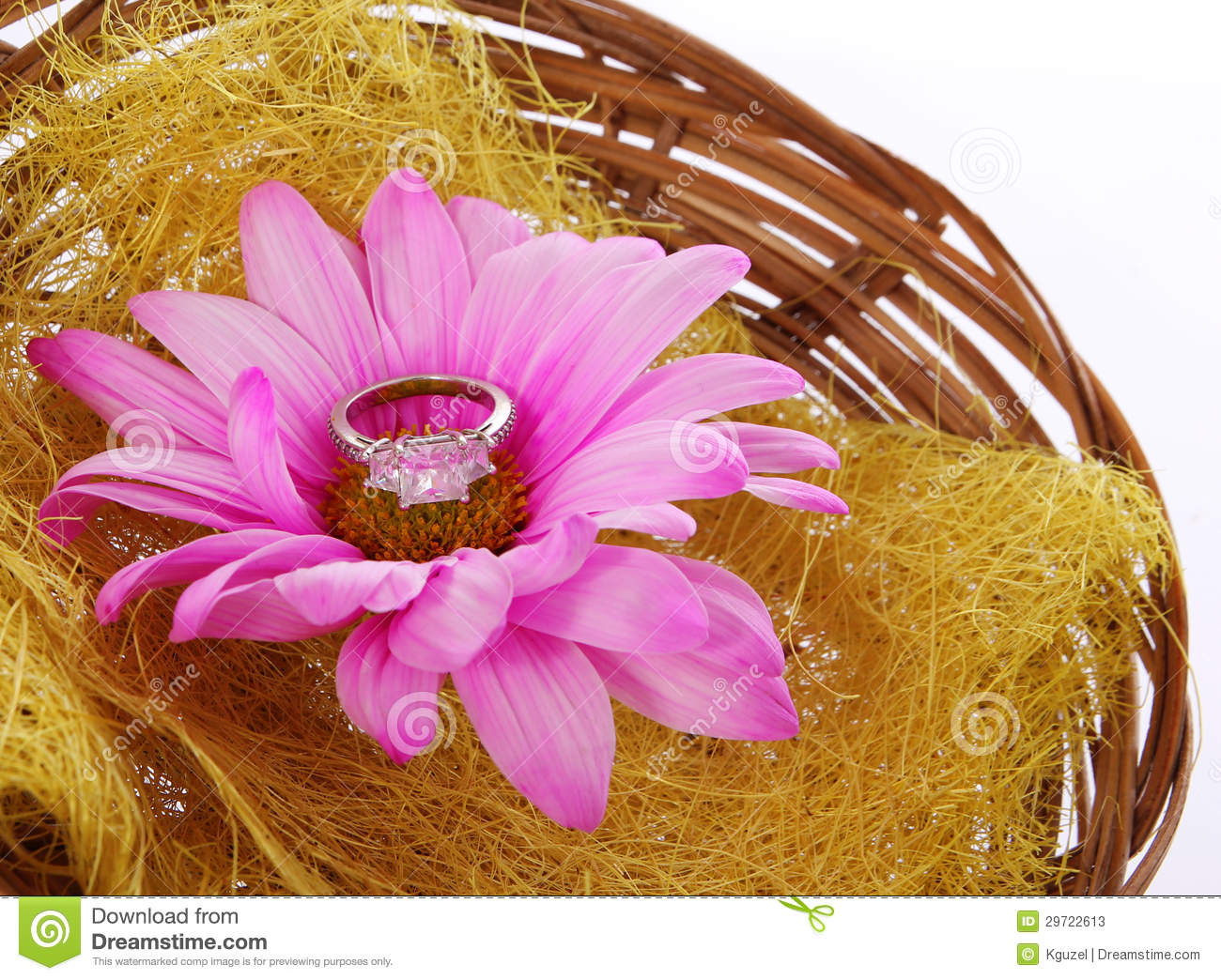 Engagement Ring With Hot Pink Chamomile Flower In Basket Isolated ...