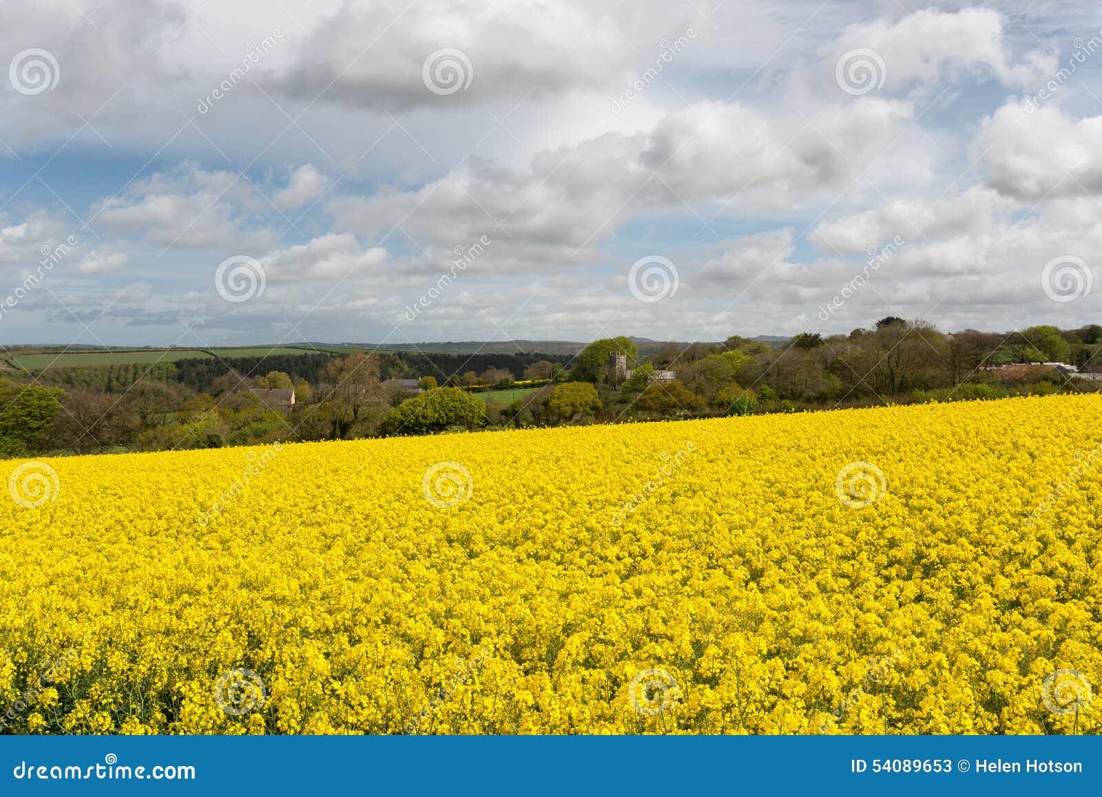 Engels platteland in de lente