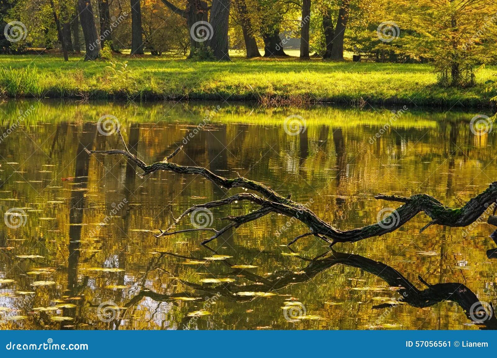 Engelse Gronden van meer Woerlitz