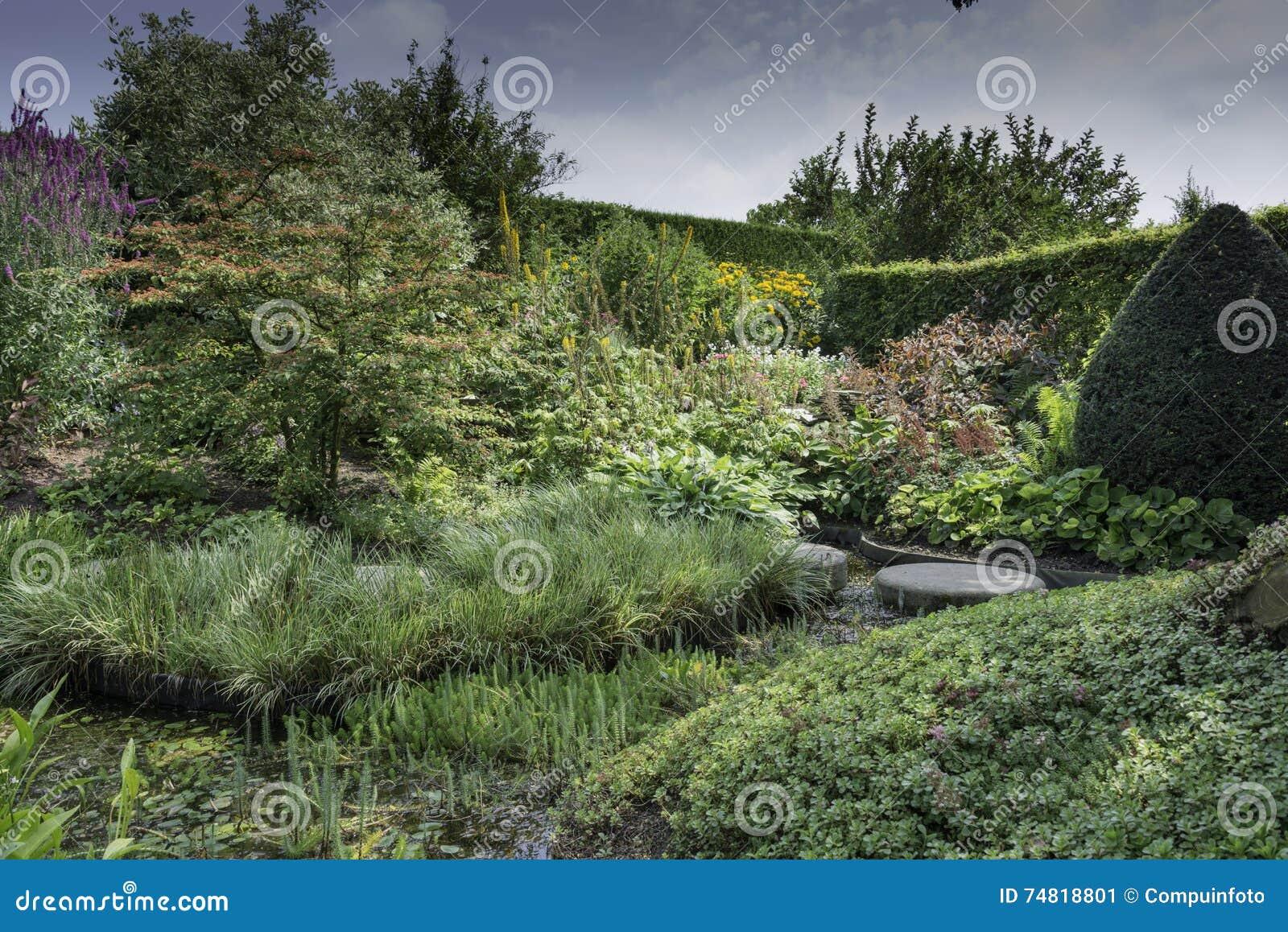 Uitzonderlijk Engelse Tuin Met Wilde Bloemen Stock Afbeelding - Afbeelding #KN39