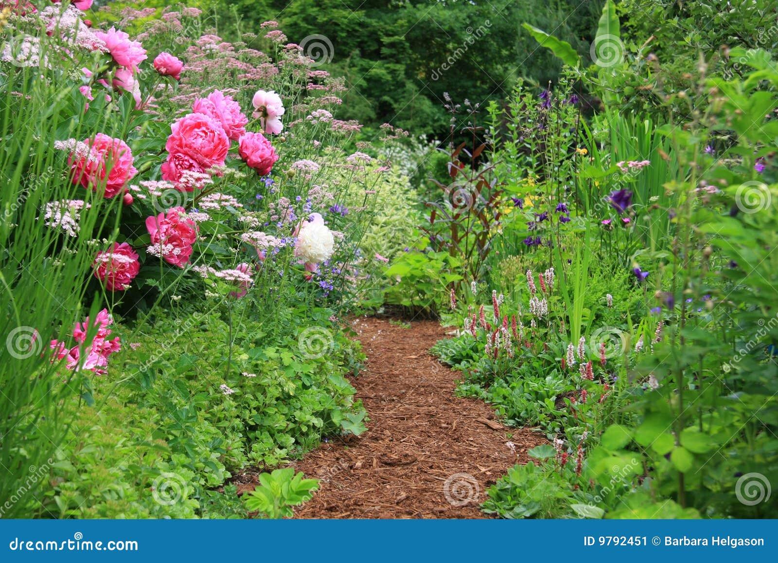 English Cottage Garden Stock Image Image Of British Path