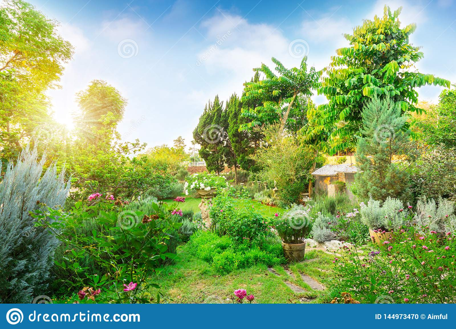 English cottage garden on green grass lawn backyard, infomal landscape decorate with roses, flower plant, rosemary herb, lavender