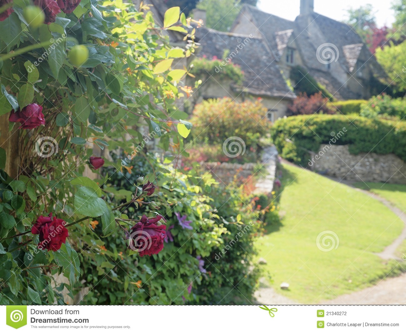 Roses In Garden: English Cottage Garden With Roses Stock Photo