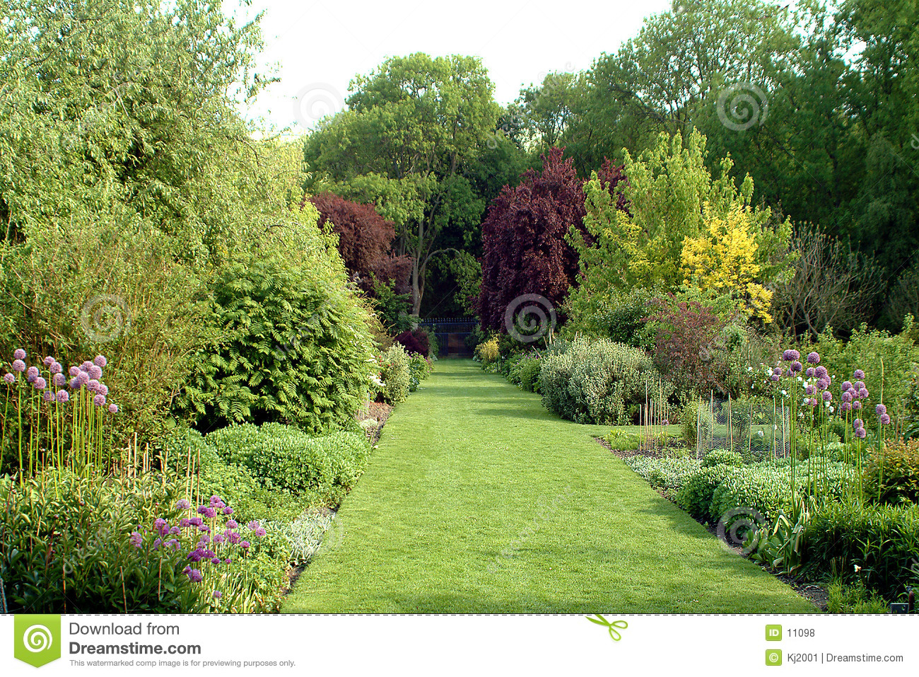 English country garden stock photo image of plants for Jardin anglais