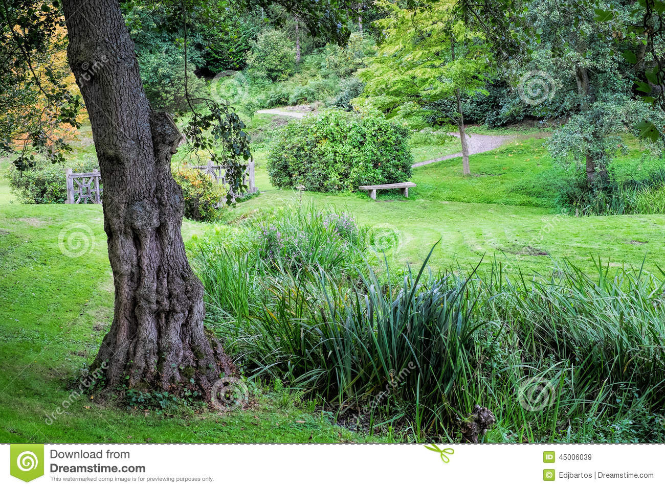 An English Garden Stock Photo Image 45006039
