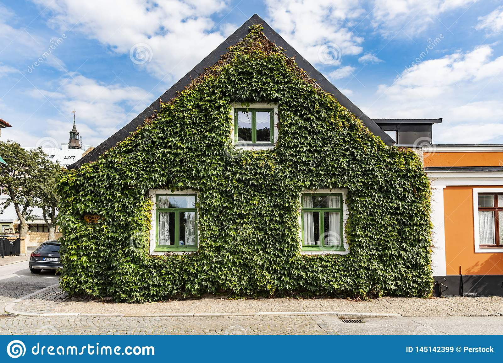 English ivy covering house gable Ystad Sweden
