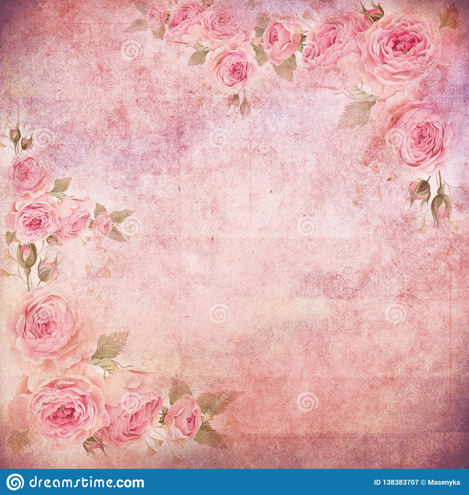 English Rose On Vintage Wallpaper Stock Illustration