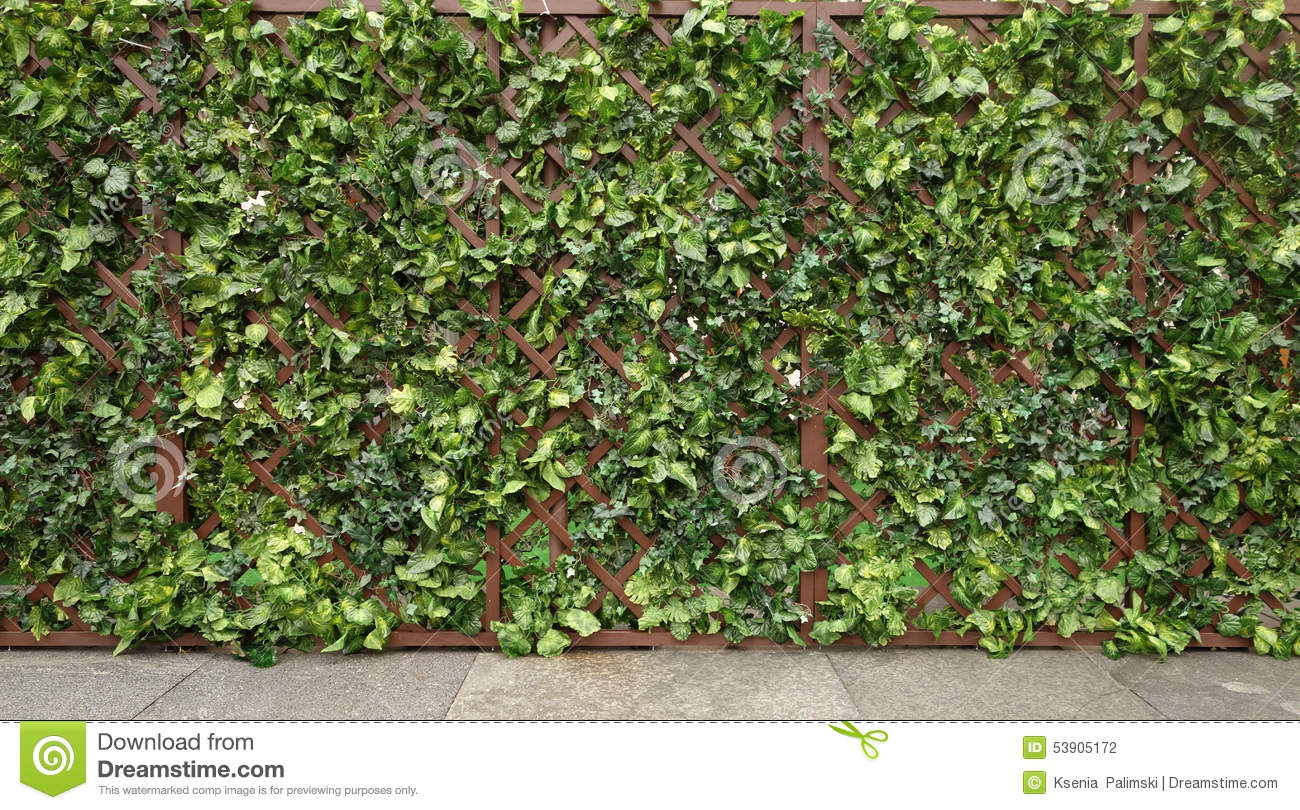 english tudor style green fence stock photo image 53905172