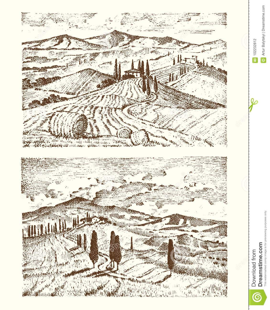 Engraved hand drawn in old sketch and vintage style for label. Italian Tuscany fields background and cypress trees